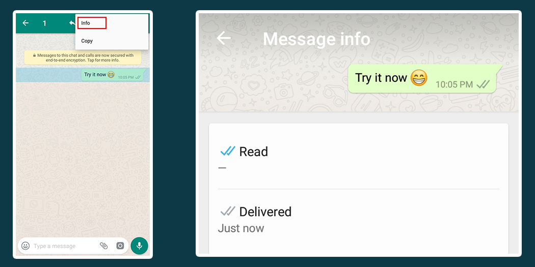 Check if someone read your message on WhatsApp - Andriod Centric
